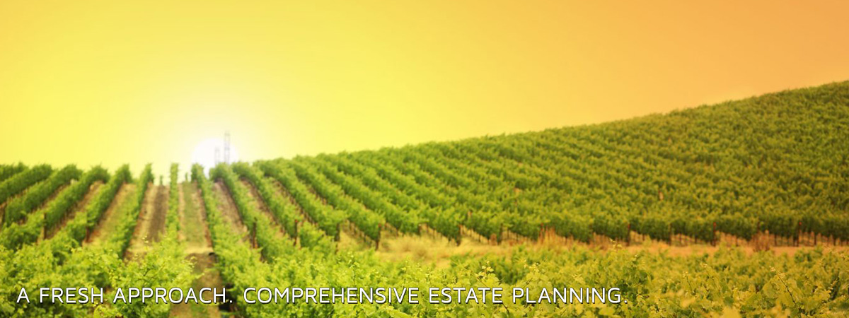 A Fresh Approach. Comprehensive Estate Planning.